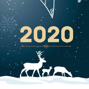 Carte de voeux BBZ cosneil 2020